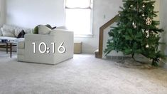 Our cat, our Christmas tree, time-lapse::Our Christmas tree looked great until our cat Andy starting climbing it, but he never did it while we were home, so I set up a time-lapse camera to spy on him all day. Happy Holidays!