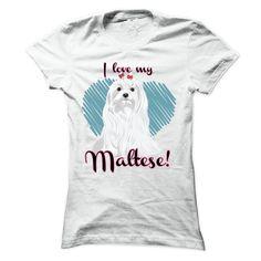 I love my Maltese! T-Shirts, Hoodies, Sweaters