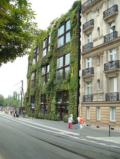 green wall paris