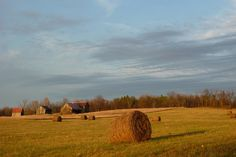 Westport Ontario - Farm Land
