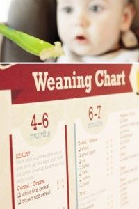 Baby weaning chart! Finally, it's all spelled out for new parents!