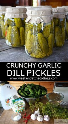 The secret to our delicious dill pickles - is in the crunch and the delicious brine. Step-by-step video and recipe shows you how to make the best Dill Pickles. Garlic Dill Pickles, Pickled Garlic, Kosher Pickles, Famous Recipe, Canning Recipes, Canning Tips, Food Inspiration, Wisdom Quotes, Quotes Quotes