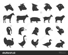 Image result for livestock icons