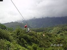 I would love to go Zip lining in the Amazon Rainforest someday soon!