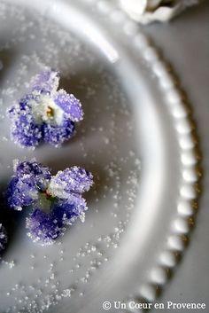 sugared pansies
