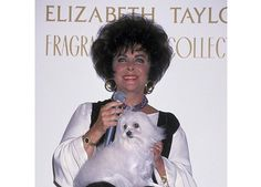 Elizabeth Taylor and her dog Sugar presenting her Fragrant Jewel Collection in San Diego, California.