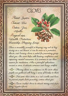Printable Herbs Book of Shadows Pages Set Herbs & Plants Correspondence, Grimoire Pages, Witchcraft, Wicca, Printable BOS – Magic – Home Recipe Wicca Herbs, Witchcraft Herbs, Witchcraft Books, Green Witchcraft, Wiccan Spell Book, Wiccan Spells, Magick Book, Magic Herbs, Herbal Magic