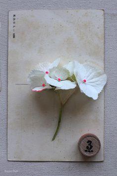 sania-pell-fluro-flowers-5