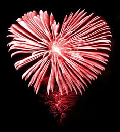 Stunning and memorable Wedding Fireworks in Birmingham and the Midlands, Contact Fireworks Factory today to discuss your Wedding Fireworks Display! Wedding Fireworks, Fig Leaves, Happy 4 Of July, My Favorite Color, Love Heart, Are You Happy, Heart Shapes, Dandelion, Our Wedding