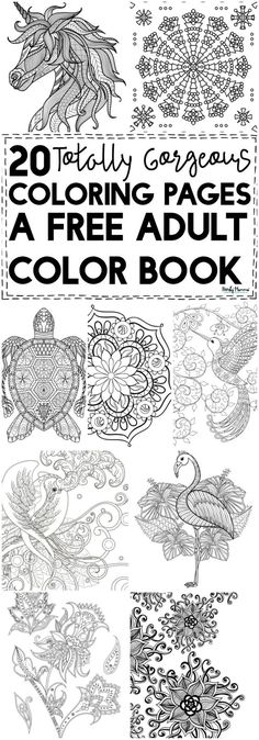 OMG You HAVE to check out this free adult color book! It's got 20 GORGEOUS coloring pages!