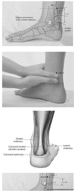 Returning Current FULIU - Acupuncture Points] 2 cun proximal the anterior border of the Achilles tendon. Reflexology Points, Reflexology Massage, Acupuncture Points, Acupressure Points, Massage Images, Massage Benefits, Massage Techniques, Traditional Chinese Medicine, Fit Bodies