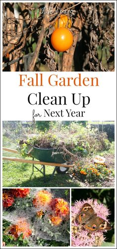 Fall Garden Clean Up for Next Year - Cleaning up the garden in the fall is just as important for your gardening season as the spring garden preparation.