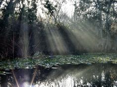 Light rays captured in a sick photograph #Amazing