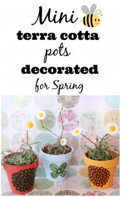 Mini Terracotta pots from the dollar tree painted and decorated for Spring - Debbiedoo's
