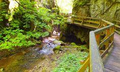 Gyönyörű szurdokvölgy csobogó patakkal  magas sziklákkal  rengeteg zölddel  és persze fa hidakkal  lépcsőkkel egészen... Fa, Garden Bridge, Outdoor Structures