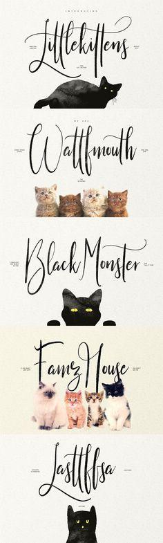 Little Kittens. Best Fonts