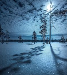 Ranua, Finland. Moonlight. : MostBeautiful