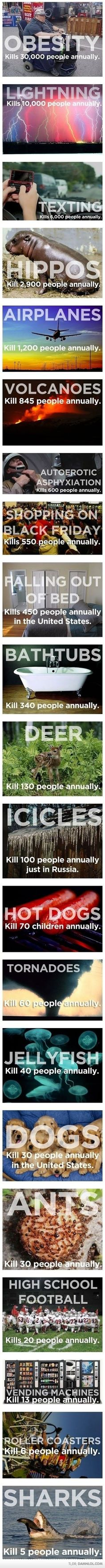 Annual Death Causes