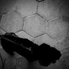 Passeio #dog #animalstyle #animallovers #animal #animal_captures #igers #igersES #ig_espiritosanto #ig_espiritosanto_pb #pb #peb #pretoebranco #tudopretonobranco #blackandwhite #dark #bw #monophoto #monotone #pixrlexpress #pixrl #TagsForLikes #contrast #street #mybest_BW #simple #motofoto