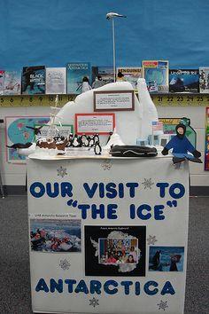 antartica display - cool (excuse the pun)