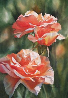 Salmon Colored Roses Painting by Sharon Freeman
