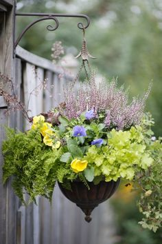 Gorgeous hanging  basket combo.  Love the hanger and basket too!