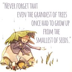 """""""Never forget that even the grandest of trees once had to grow up from the smallest of seeds."""" Miss Maple's Seeds by. Eliza Wheeler"""