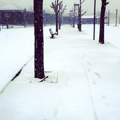 Douce neige