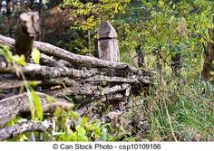 A background with a view of an old wooden fence in the wild, during summer. - csp10109186   ..rh