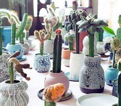 Cactus in lots of different little vases and pots......easy to collect at flea markets and thrift stores.