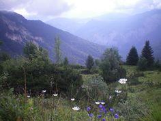 Alpes Mountains Germany near Garmisch Partenkirchen and Zugspitze