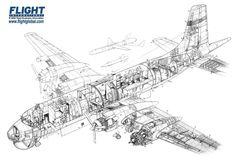 Canadair Argus cutaway drawing