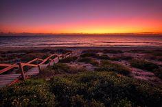 Cottlesloe beach,Perth, Australia.