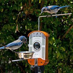 ThinkGeek :: Bird Photo Booth