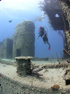 Wreck of the Prince Albert, Roatan dive site. A dive of 110 feet. Andres and I went in 2011.  A dream come true would be to search for and find hidden treasures deep beneath the Ocean...