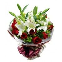 Send flowers to your loved ones to make a special gift, Send flowers Online, Buy Plants Online, Send gifts to India. Gifts for lasting memories. Flowering Plants In India, Bonsai Plants For Sale, Bonsai Plants Online, Order Plants Online, Send Flowers Online, Order Flowers, Rose Delivery, Flower Delivery, Ficus