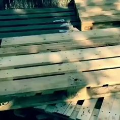 "Have you ever wanted to build something, because you cannot find it ""retail""? Thought of making something custom for a specific need? Struggled to find detailed plans to build your dream project? Check the link in my BIO and get The World's…Read Wooden Pallet Projects, Wooden Pallets, Diy Projects, Recycled Pallets, Pallet Furniture Instructions, Euro Pallets, 1001 Pallets, Photo Projects, Pallet Garden Furniture"