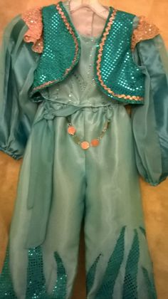 Hand Made in USA, Product of USA, there are 4 pieces, Top, Pants, Vest and Shash. Shimmer and Shine genie inspiration costume, princess Jasmine