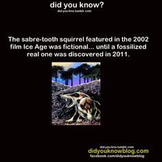 Saber Tooth Squirrel - The new species—dubbed Cronopio dentiacutus for its narrow snout and long fangs—was about 8 to 9 inches (20 to 23 centimeters) long and likely used its pointy teeth to hunt and eat insects.