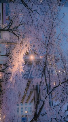 Anime Scenery Wallpaper, Aesthetic Pastel Wallpaper, Aesthetic Backgrounds, Aesthetic Wallpapers, Aesthetic Japan, City Aesthetic, Best Photo Background, Background Pictures, Beautiful Landscape Wallpaper
