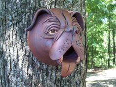 Dog birdhouse - site has many other examples
