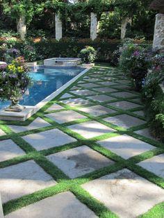 Lush - small mondo grass between pavers. by sondra