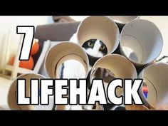 7 LifeHacks with Toilet Paper Rolls for a cat - YouTube