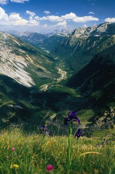 Ordesa and Monte Perdido National Park (Huesca): spring has come… at last!