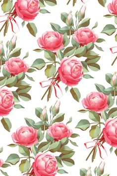 a bouquet of roses on Behance