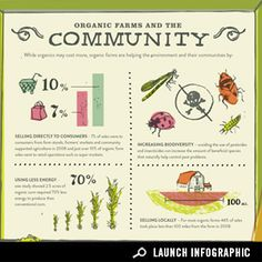 Infographic: The state of organics Bird Aviary, Data Visualization, Permaculture, Grocery Store, Good To Know, Infographics, Whole Food Recipes, Product Launch, Place Card Holders