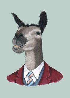 Etsy の Llama print 5x7 by berkleyillustration