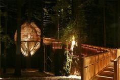 Treehouse Restaurant in New Zealand