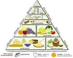 Balanced diet is the key to fitness of a person. This article briefly explains balanced diet and gives the energy requirements for individuals of different ages and occupations. It also provides tips and guides to maintain a normal balanced diet. Vegetarian Food Pyramid, Vegetarian Recipes, Vegetarian Diets, Paleo Food, Healthy Food, Vegetarian Benefits, Vegetarian Cooking, Healthy Meals, Food Triangle