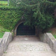 Puerta a lo desconocido en un parque de Pamplona